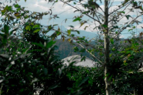 Foto de terreno habitacional en venta en temimil veracruz , xico, xico, veracruz de ignacio de la llave, 5642657 No. 06