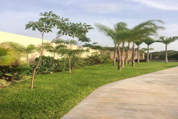 Foto de terreno habitacional en venta en  , temozon norte, mérida, yucatán, 7195973 No. 03