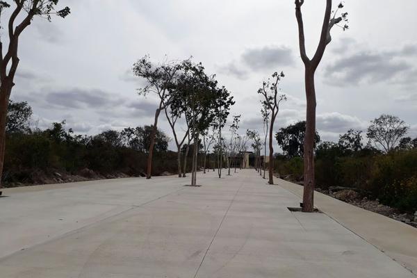 Foto de terreno habitacional en venta en  , temozon norte, mérida, yucatán, 8377659 No. 06
