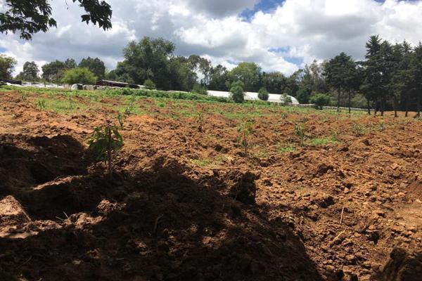 Foto de terreno comercial en venta en  , tenancingo de degollado, tenancingo, méxico, 5761704 No. 01