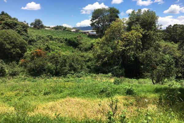 Foto de terreno comercial en venta en  , tenancingo de degollado, tenancingo, méxico, 5761704 No. 03