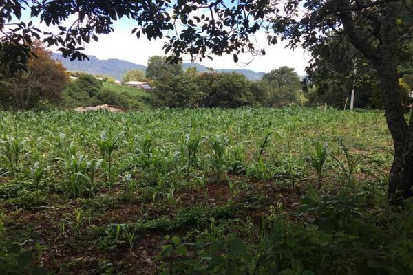 Foto de terreno comercial en venta en  , tenancingo de degollado, tenancingo, méxico, 5761704 No. 04
