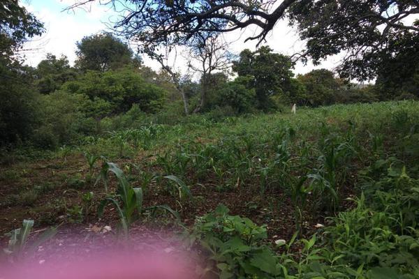 Foto de terreno comercial en venta en  , tenancingo de degollado, tenancingo, méxico, 5761704 No. 05