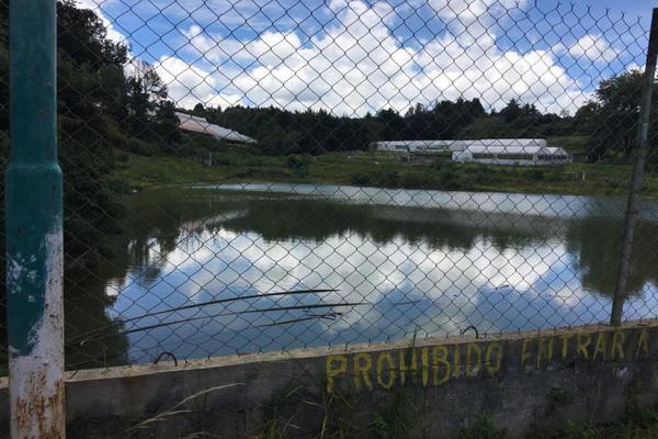 Foto de terreno comercial en venta en  , tenancingo de degollado, tenancingo, méxico, 5761704 No. 06