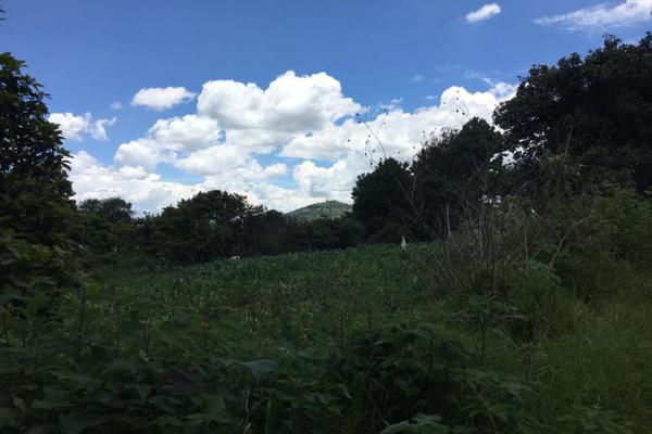 Foto de terreno comercial en venta en  , tenancingo de degollado, tenancingo, méxico, 5761704 No. 08