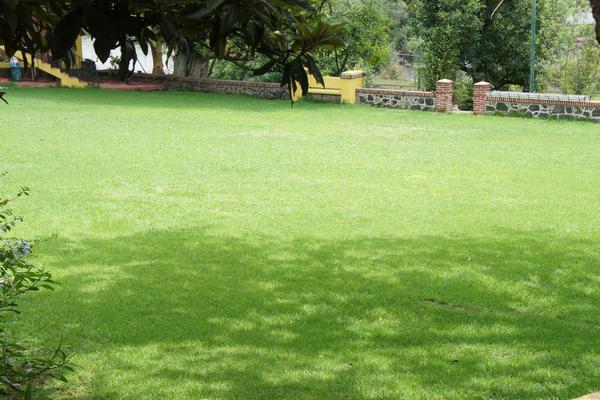 Foto de casa en venta en  , tenancingo de degollado, tenancingo, méxico, 7243065 No. 03