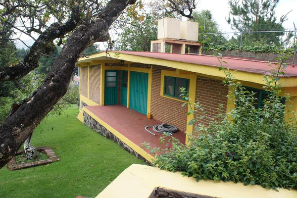 Foto de casa en venta en  , tenancingo de degollado, tenancingo, méxico, 7243065 No. 12