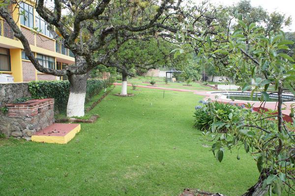 Foto de casa en venta en  , tenancingo de degollado, tenancingo, méxico, 7243065 No. 28