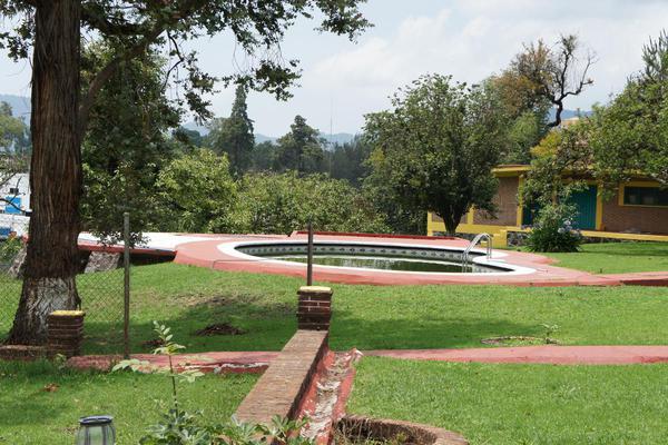 Foto de casa en venta en  , tenancingo de degollado, tenancingo, méxico, 7243065 No. 65