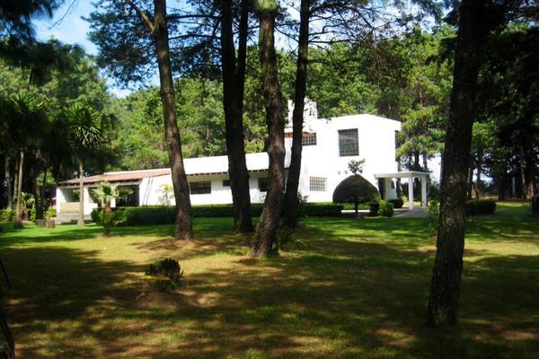 Foto de casa en venta en tenancingo sin numero , ozumba de alzate, ozumba, méxico, 12151566 No. 03