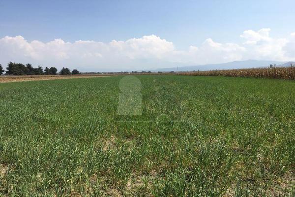 Foto de terreno industrial en venta en tenango rayón , centro, tenango del valle, méxico, 5708329 No. 02