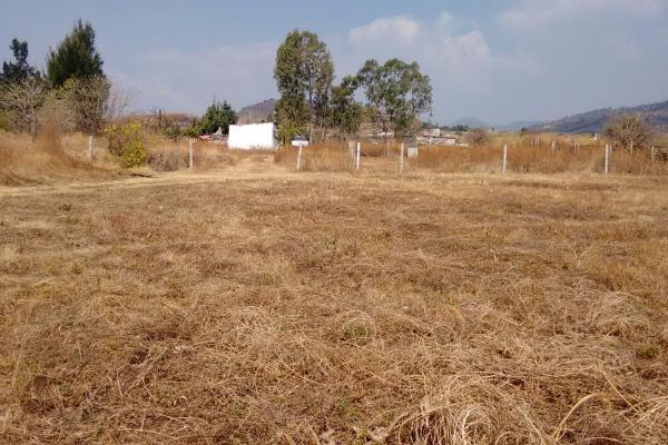 Foto de terreno habitacional en venta en tepantongo 0 , atlatlahucan, atlatlahucan, morelos, 0 No. 03
