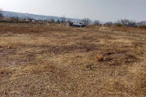 Foto de terreno habitacional en venta en tepantongo 0 , atlatlahucan, atlatlahucan, morelos, 0 No. 05
