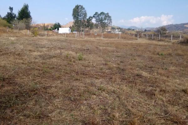 Foto de terreno habitacional en venta en tepantongo 0 , atlatlahucan, atlatlahucan, morelos, 0 No. 07