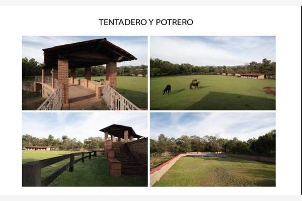 Foto de rancho en venta en tepeji del rio 00, santiago tlapanaloya, tepeji del río de ocampo, hidalgo, 7142795 No. 13