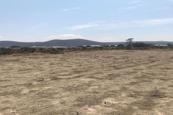 Foto de terreno habitacional en venta en  , tepeyahualco, tepeyahualco, puebla, 8115353 No. 12