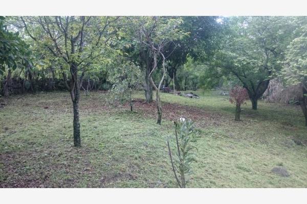 Foto de terreno habitacional en venta en  , chisco, tepoztlán, morelos, 8862024 No. 02