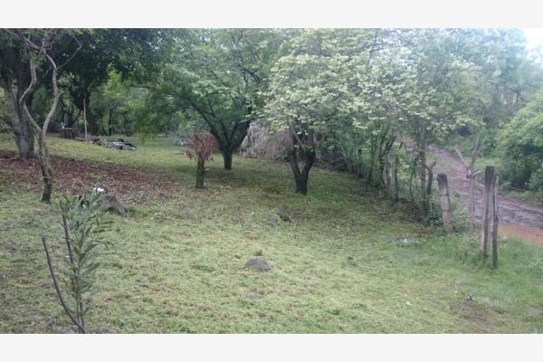 Foto de terreno habitacional en venta en  , chisco, tepoztlán, morelos, 8862024 No. 03