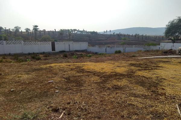 Foto de terreno habitacional en venta en  , tequesquitengo, jojutla, morelos, 7962630 No. 03