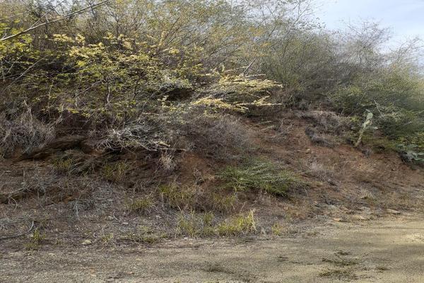 Foto de terreno habitacional en venta en terreno en venta en la lomita 3 , el cercado centro, santiago, nuevo león, 20075472 No. 09