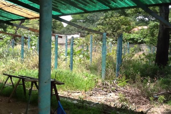 Foto de terreno habitacional con id 236719 en venta en galeana cocoyoc no 07