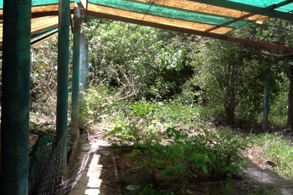 Foto de terreno habitacional con id 236719 en venta en galeana cocoyoc no 08
