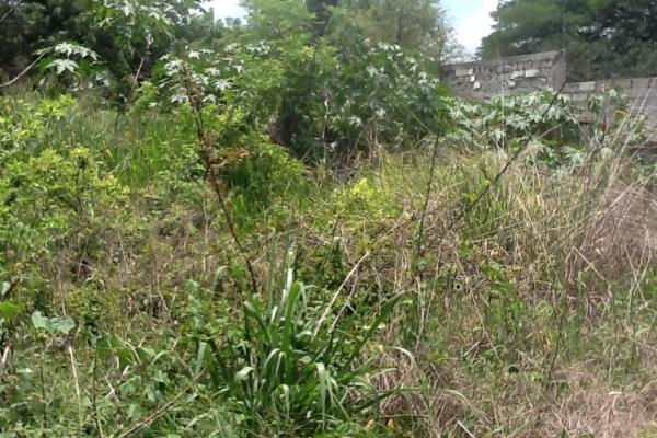 Foto de terreno habitacional con id 236719 en venta en galeana cocoyoc no 09