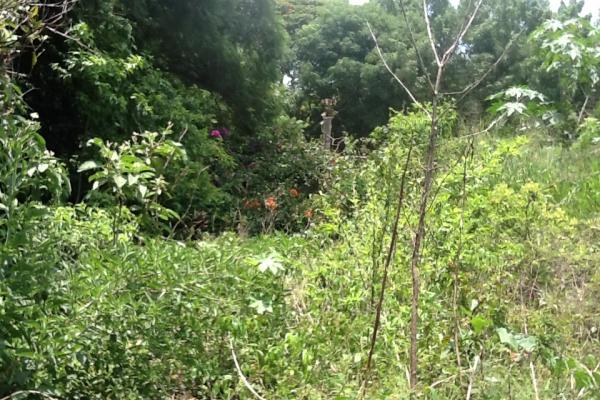Foto de terreno habitacional con id 236719 en venta en galeana cocoyoc no 10