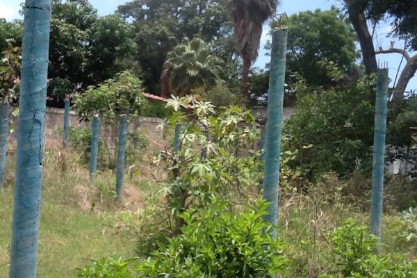 Foto de terreno habitacional con id 236719 en venta en galeana cocoyoc no 15