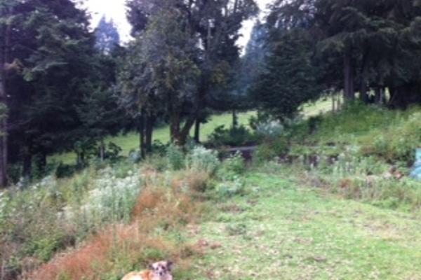 Foto de terreno habitacional con id 112927 en venta en picacho ajusco santo tomas ajusco no 07