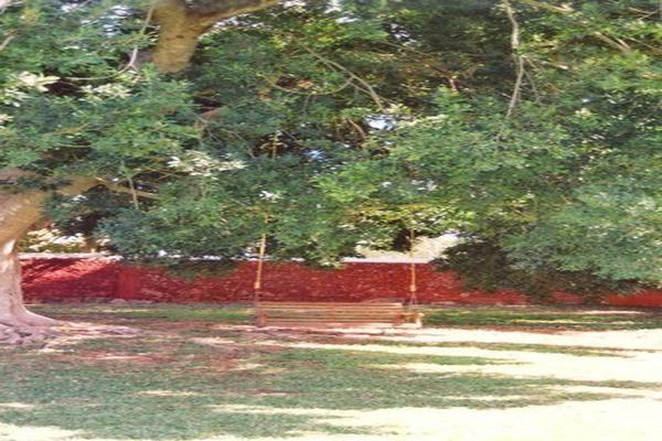 Foto de rancho en venta en  , tesip, mérida, yucatán, 10640548 No. 06