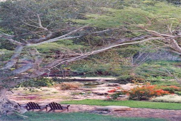 Foto de rancho en venta en  , tesip, mérida, yucatán, 10640548 No. 10