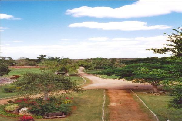 Foto de rancho en venta en  , tesip, mérida, yucatán, 10640548 No. 13