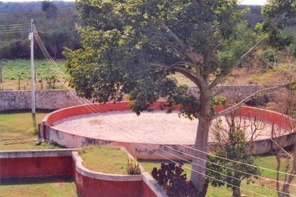 Foto de rancho en venta en  , tesip, mérida, yucatán, 10640548 No. 18