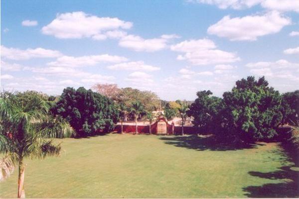 Foto de rancho en venta en  , tesip, mérida, yucatán, 10640548 No. 27