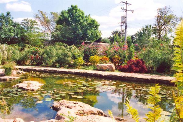 Foto de rancho en venta en  , tesip, mérida, yucatán, 10640548 No. 41