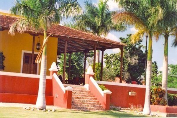 Foto de rancho en venta en  , tesip, mérida, yucatán, 10640548 No. 43