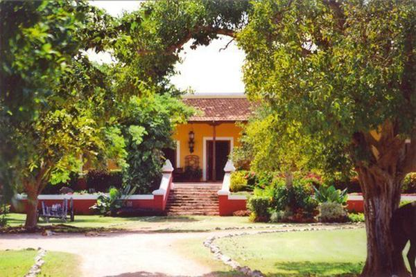 Foto de rancho en venta en  , tesip, mérida, yucatán, 10640548 No. 45