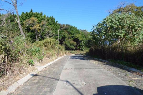 Foto de terreno habitacional en venta en  , tetela del monte, cuernavaca, morelos, 3110739 No. 03