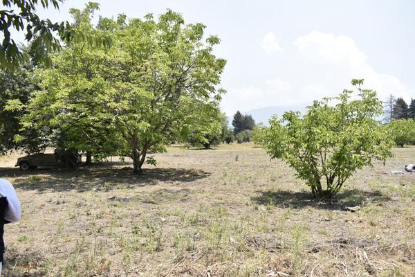 Foto de terreno habitacional en venta en texcaltitla , san jacinto, atlautla, méxico, 0 No. 04