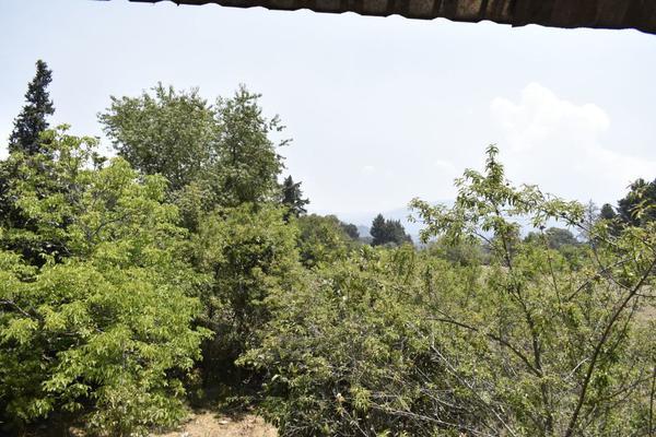 Foto de terreno habitacional en venta en texcaltitla , san jacinto, atlautla, méxico, 0 No. 05