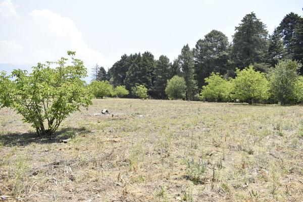 Foto de terreno habitacional en venta en texcaltitla , san jacinto, atlautla, méxico, 0 No. 06