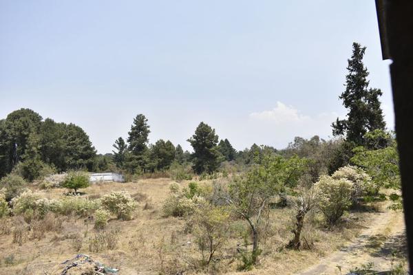 Foto de terreno habitacional en venta en texcaltitla , san jacinto, atlautla, méxico, 0 No. 07