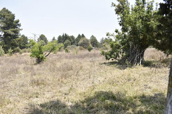 Foto de terreno habitacional en venta en texcaltitla , san jacinto, atlautla, méxico, 0 No. 08