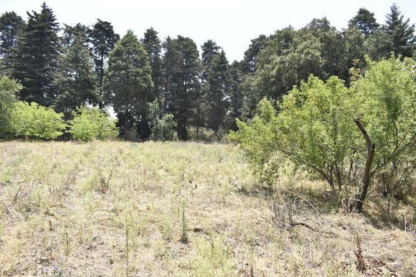 Foto de terreno habitacional en venta en texcaltitla , san jacinto, atlautla, méxico, 0 No. 10