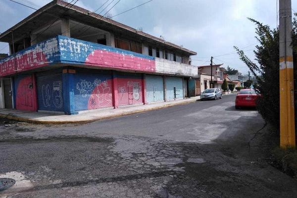 Foto de local en venta en  , texcoco de mora centro, texcoco, méxico, 10347631 No. 02