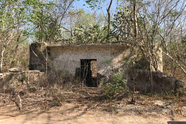 Foto de rancho en venta en  , teya, teya, yucatán, 8328769 No. 03