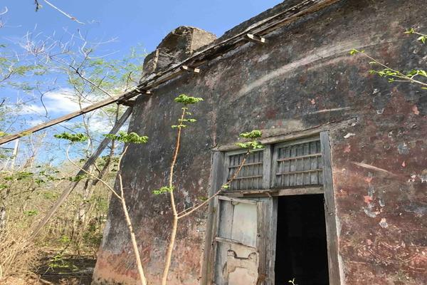 Foto de rancho en venta en  , teya, teya, yucatán, 8328769 No. 04