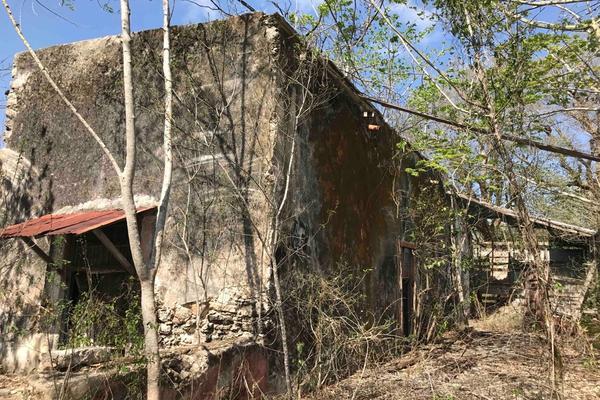 Foto de rancho en venta en  , teya, teya, yucatán, 8328769 No. 05