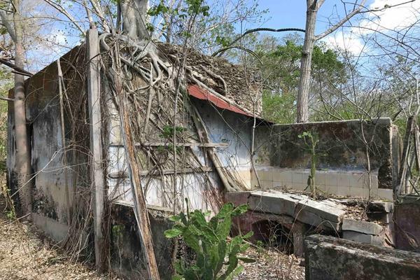 Foto de rancho en venta en  , teya, teya, yucatán, 8328769 No. 06
